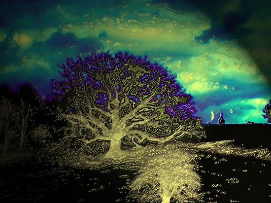Digital Art - Tree - Anthony McNamee (aka blamo) - Master Silkscreen Printer - Surrey Artist - FESPA Screen-Printing Association and PRISM Digital Association