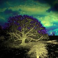 Digital Art – Tree – Anthony McNamee (aka blamo) – Master Silkscreen Printer – Surrey Artist – FESPA Screen-Printing Association and PRISM Digital Association