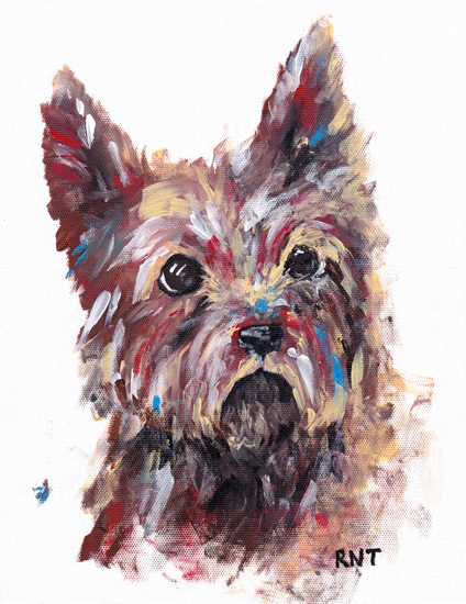 Dog Portrait - Terrier - Rachael Tan - Surrey Artist - Painting in Acrylics on Canvas and Drawings in Charcoal and Pencil