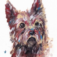 Dog Portrait – Terrier – Rachael Tan – Surrey Artist – Painting in Acrylics on Canvas and Drawings in Charcoal and Pencil