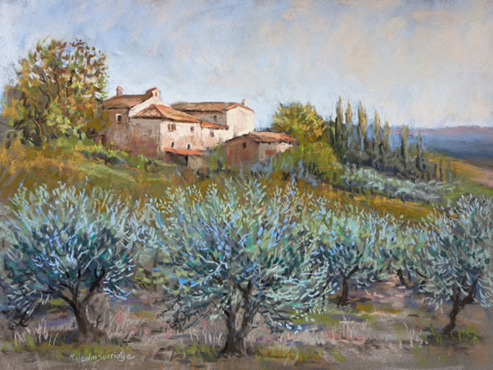 Evening Olives, Tuscany - Malcolm Surridge - Artist - Painting in Pastels - Surrey Artists Gallery