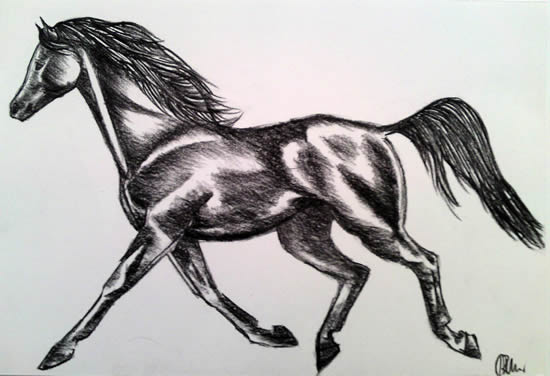 Horse - Air and Fire - Rachael Tan - Surrey Artist - Painting in Acrylics on Canvas and Drawings in Charcoal and Pencil
