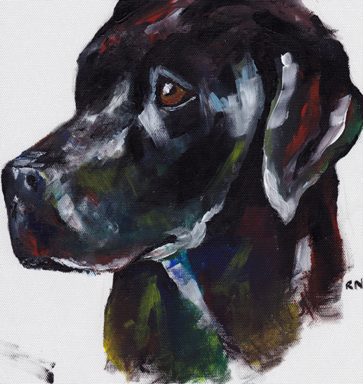 Labrador - Rachael Tan - Surrey Artist - Painting in Acrylics on Canvas and Drawings in Charcoal and Pencil