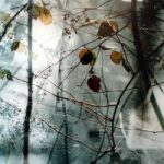 Leaves with Ice – Surrey Artist Christiane Zschommler – Fine Art Photography
