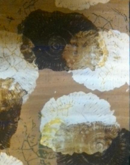 Ammonites - Karen Marie Budge - Surrey Artists