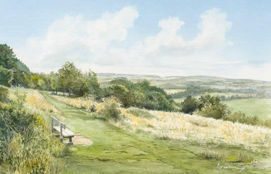 Newlands Corner - Surrey - Art Prints