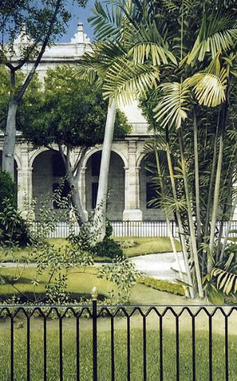 Plaza de Armas Noël Haring Surrey Artist
