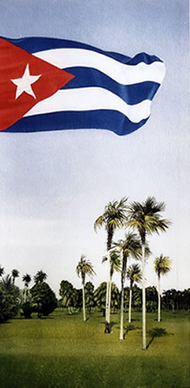 Viva Cuba and Cuban Flag - Fine Art Prints - Noël Haring - Surrey Art Gallery