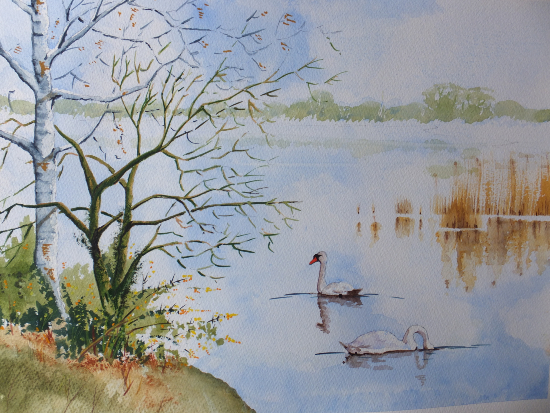Frensham Little Pond Surrey Art Gallery