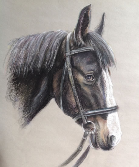 Horse Portrait Painting in Soft Pastel - Reigate Artist