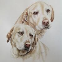 Labradors Dog Portrait Painting