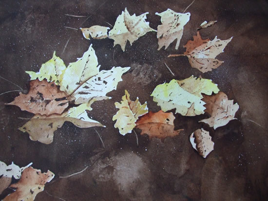 Leaves on Basingstoke Canal Woking - Watercolour Art