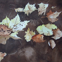 Leaves on Basingstoke Canal Woking – Watercolour – Surrey Art Gallery