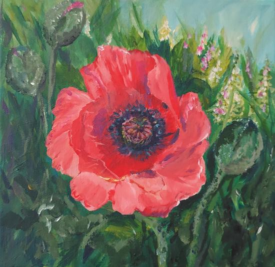 Large Poppy - Floral Art - Morning Beauty - Woking Art Society Artist Yana Linch