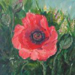 Large Poppy – Floral Art – Morning Beauty – Woking Art Society Artist Yana Linch