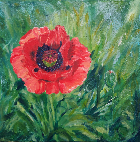 Red Pink Poppy Unfurled - Floral Art - Woking Art Society member Yana Linch