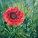 Red Pink Poppy Unfurled – Floral Art – Woking Art Society member Yana Linch