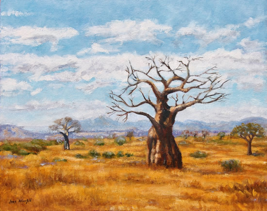 Baobab Trees Soutpansberg Limpopo Painting - South Africa Gallery - Guildford Art Society Member Jane Atherfold