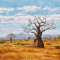 Baobab Trees Soutpansberg Limpopo Painting – South Africa Gallery – Guildford Art Society Member Jane Atherfold