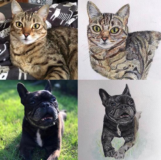Pet Portraits by Fetcham Surrey Animal Artist Erika Perrett