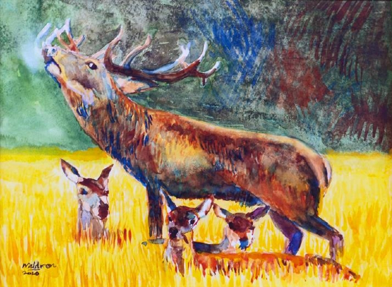 Stag Deer with Fawns - SAA Artist of the Year 2021 - Richard Waldron