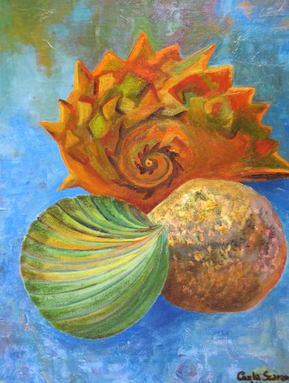 Sea Shells - Still-Life Artwork by Woking Art Society member Carla Scarano